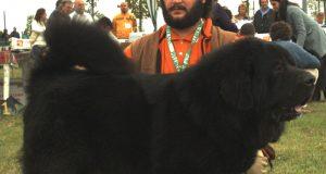 Tibetaanse Mastiff