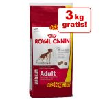 Royal canin Medium Size