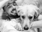 Honden en hun karakter